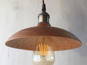 センノキのランプシェードの画像