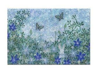 選べるポストカード(4枚)NO.17「光の庭」の画像