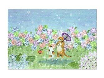 選べるポストカード(4枚)NO.20「雨降り小径」の画像