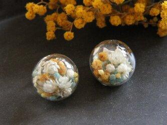 春を纏うイヤリングの画像