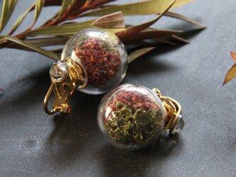 ワインカラーとモスグリーンのイヤリングの画像