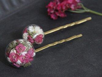 お揃い花のヘアピンの画像