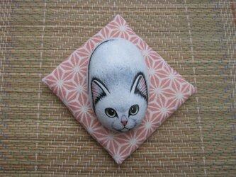 石猫 「招福」玉之丞の画像