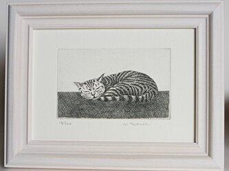 お昼寝の猫 / 銅版画 (額あり)の画像