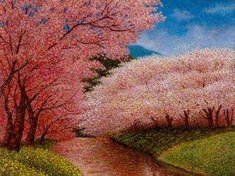春の流れの画像