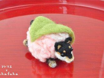 羊毛フェルトの桜餅わんこ 黒柴の画像
