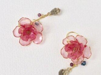 八重桜ピアスの画像