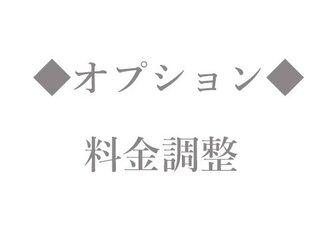 オプション【料金調整】の画像