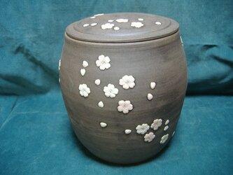 【SALE】壷・桜花の画像