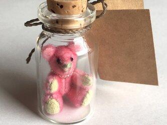 2017年3月3日 Bottled Bearの画像
