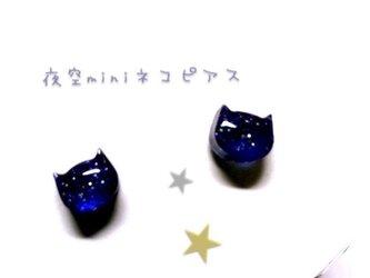 夜空 mini猫 ピアスの画像