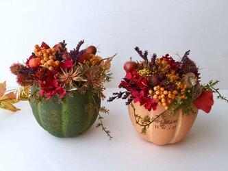 Dryflower autumn arrange「Green」の画像