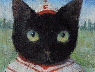 黒ねこ・野球の画像