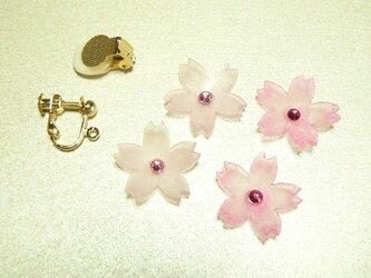 春です!!桜パーツのイヤリング さくらサクラの画像