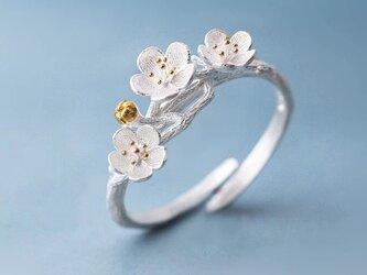 小さな蓮の花の画像