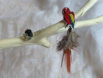 コンゴウインコのフェザー&天然石ピアス(red)の画像