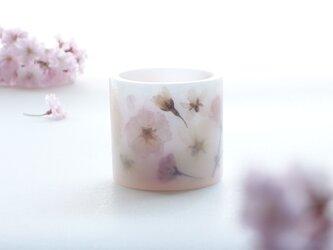 桜のランタンキャンドルの画像