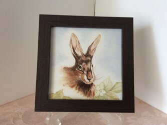 ウサギの額絵の画像