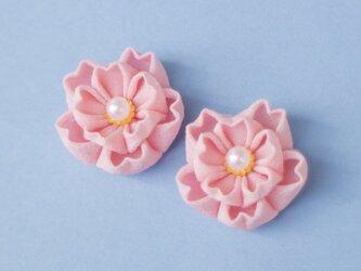 イヤリング 八重桜♡春うららイヤリング♡ 〈受注制作〉ピンク つまみ細工の画像