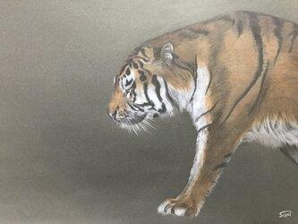絵画【虎】の画像