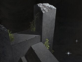 星の階段(2L)の画像