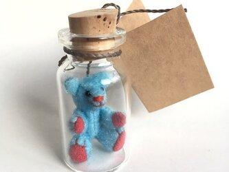 2017年3月5日 Bottled Bearの画像