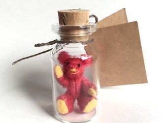 2017年3月6日 Bottled Bearの画像