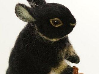 おでかけウサギ 黒の画像