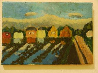 朝の光の中の水田の画像
