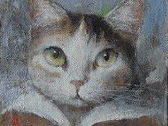 ミケ・赤いセーラー(Sold out)の画像