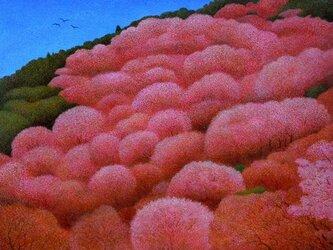 桜日和の画像