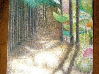 色鉛筆画ポストカード3種の画像