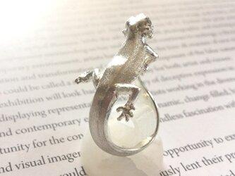 フトアゴの指輪の画像