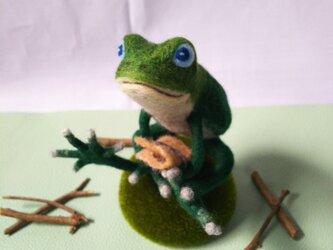 蛙のモスの画像