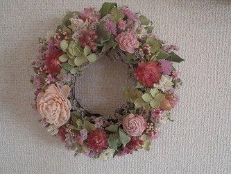 COLORS+春色ピンクリースの画像
