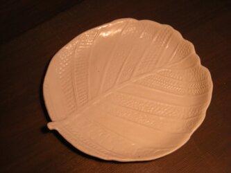 白釉はんの木葉皿(大)の画像