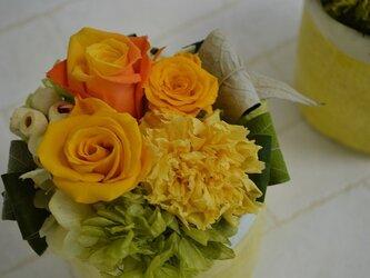 parfum de couleur  黄色系の画像
