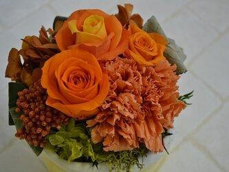 parfum de couleur  オレンジ系の画像