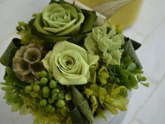 parfum de couleur  グリーン系の画像