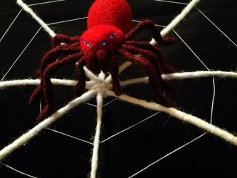 蜘蛛*赤の画像