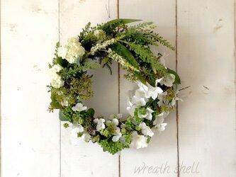 Green wreath ・リッチグリーン1の画像