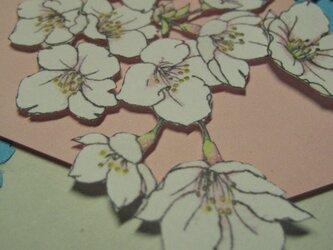 フリーメッセージ【吉野さくら】◇A5薄緑色カード(桃色背景)の画像