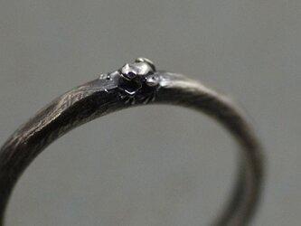 よく見たらカエルリング ~アマガエルバージョン~ たぶん世界で一番小さい蛙の指輪の画像