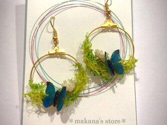 ✴︎〜 春の訪れ  野原の蝶々ピアス 青い蝶 〜✴︎の画像