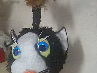 """猫じゃらし青い目のメリー""""NO20の画像"""