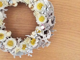 乙女な春リース 白いお花を集めましたの画像