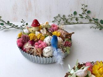 Mini garden (dry flowers )の画像
