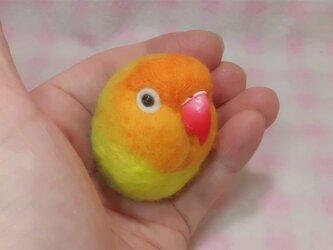 ヤマブキボタンインコ  ☆選べる2タイプ☆(Aマグネット・Bクリップ付ブローチピン)  コロコロ♪丸顔  羊毛の小鳥の画像