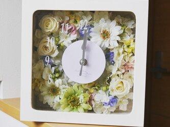 花時計 ダブルウィンドウの画像