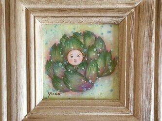 「アーティチョークの赤ちゃん」の画像